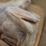 原粮散养小公鸡 现杀毛重1.5~2.0斤