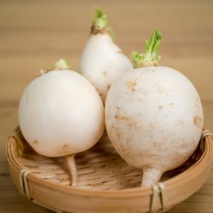 无公害圆白萝卜(1斤)
