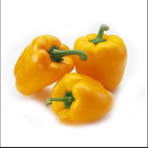 无公害黄彩椒(1斤)