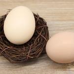 茶园散养草鸡蛋 30/盒 绿壳