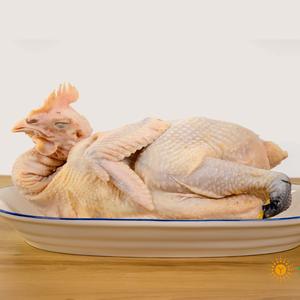 桃园散养草母鸡(毛重3.0-3.5斤) 1年