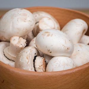 无农药圆白蘑菇