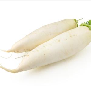 无农药大白萝卜