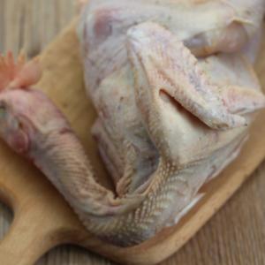 发酵床散养小公鸡 现杀毛重1.0斤-1.5斤 80天