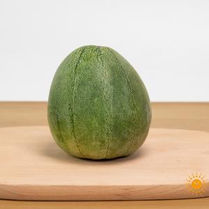 有机青香瓜