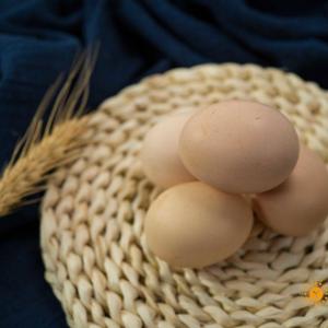 (每人限1份)桃园散养黄壳草鸡蛋 15/盒