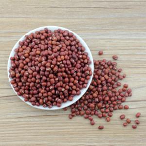 非转基因红豆