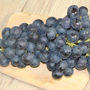 避雨栽培夏黑葡萄