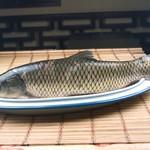 茅山水库野生草鱼
