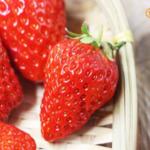 鲜草莓(绿色防控) 家庭装(2斤)