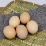 林下散养草鸡蛋 15/盒