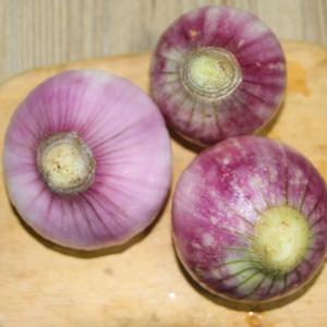 无公害紫洋葱