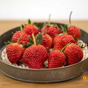 鲜草莓(绿色防控) 1斤