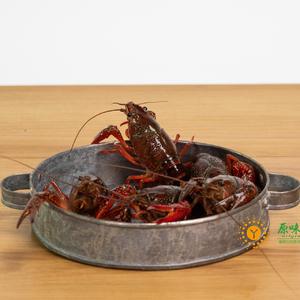 橘江里野生龙虾 每只4~6钱
