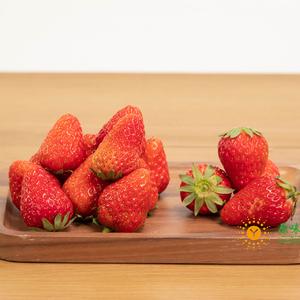 (每人限1份)鲜草莓约250g