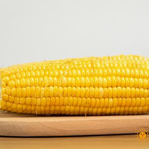 无公害甜玉米(1斤)