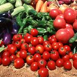 无农药蔬菜套餐 四人单月(64斤)