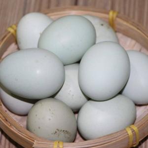 河边散养绿壳初生蛋 30/盒