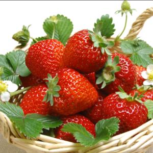 鲜草莓(2斤)