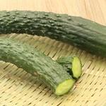 无农药绿翡翠黄瓜