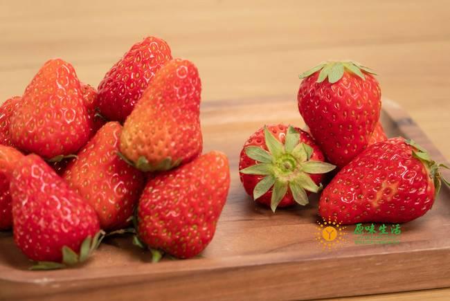3月之无农药草莓餐桌溯源开始报名啦!