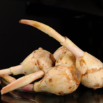 安全种植鲜茨菇