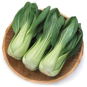 无农药大青菜