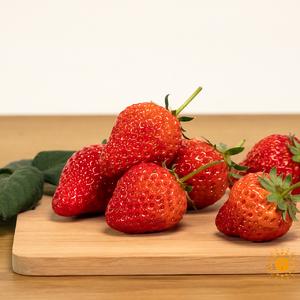无农药草莓
