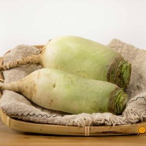 无公害青头萝卜(约1斤)