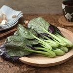 无农药紫青菜