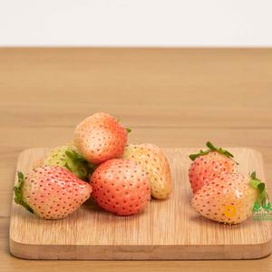 白雪公主草莓(2斤)