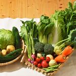 无农药蔬菜套餐 三人半年(288斤)