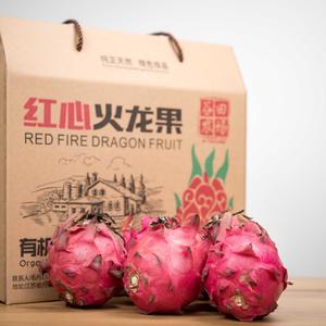 红心火龙果 5斤礼盒装