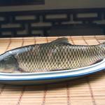 外江野生草鱼