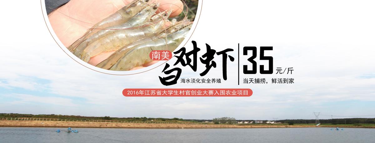 海水淡化南美白对虾
