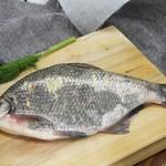 茅山水库野生鳊鱼